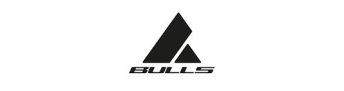 Dev5310 Logo Bulls